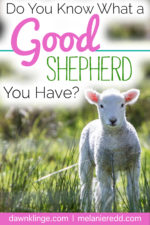 Do you know what a Good Shepherd you have?